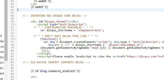second example of where to insert disqus code on shopify site.