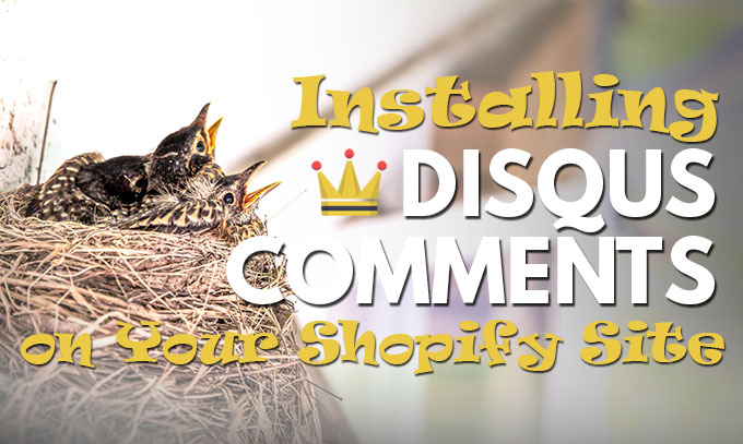 Installing Disqus Comments on Shopify
